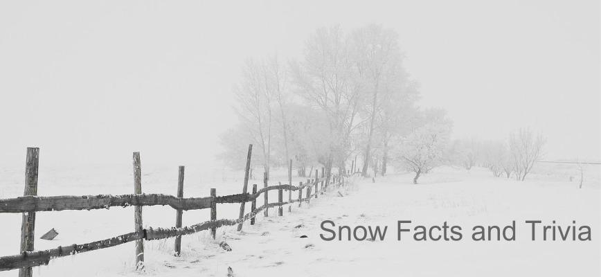 Snow Facts and Trivia